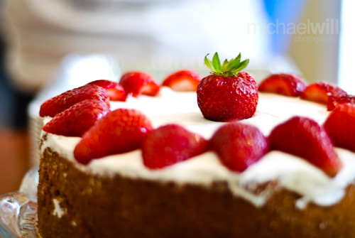 more cheesecake - michaelwill photography